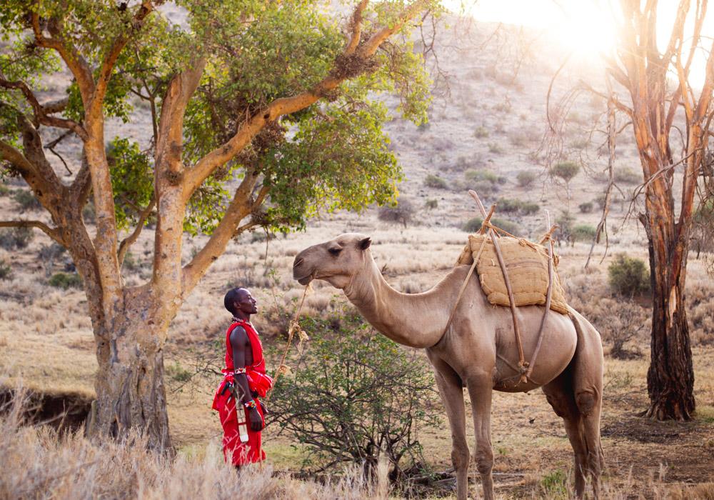 Lewa-CamelRides03